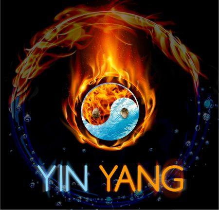 Yin Yang Genetics